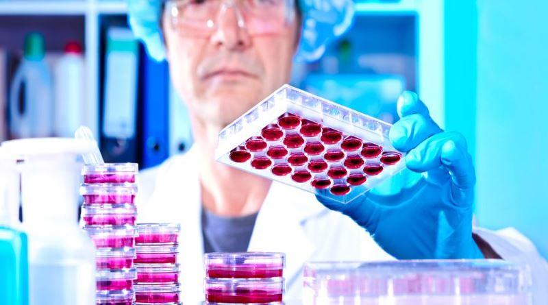 Иммуно-лабораторное исследование