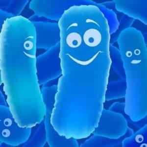 Как восстановить микрофлору пробиотиками