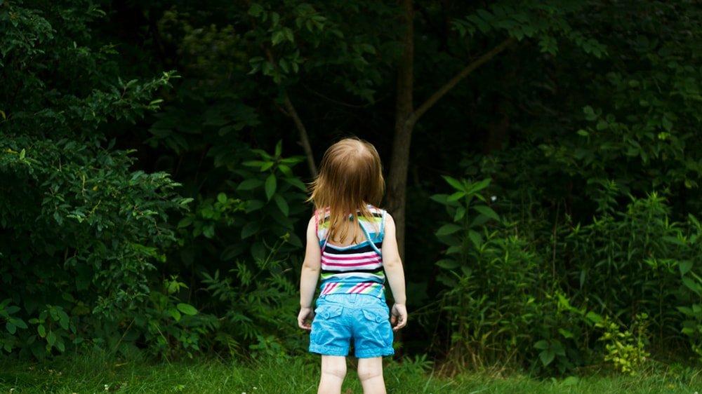 девочка потерялась в лесу