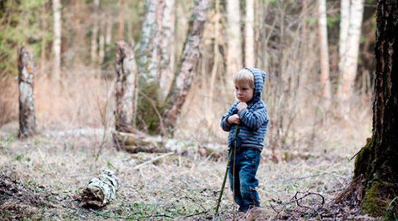 если потерялся в лесу памятка для детей