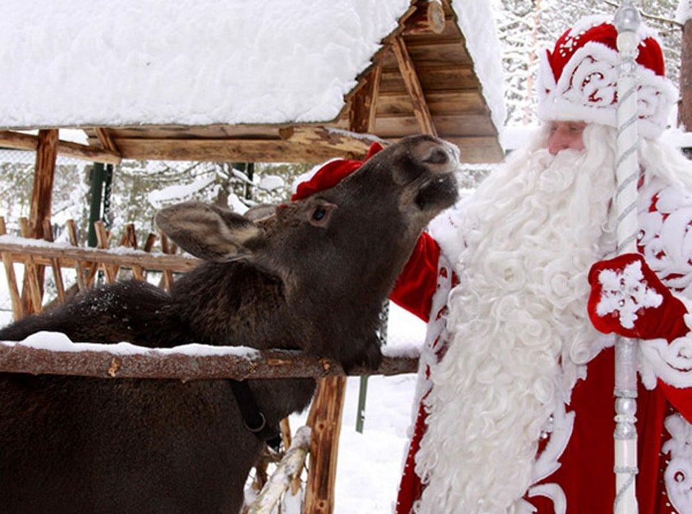 Дед Мороз в Костроме