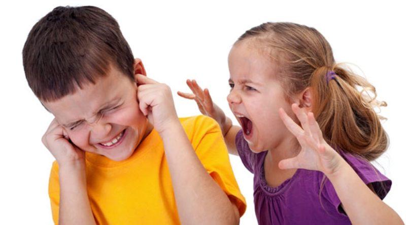 причины ссоры детей
