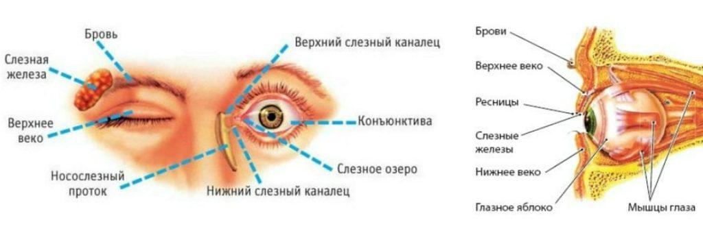 Причины непроходимости слёзного канала