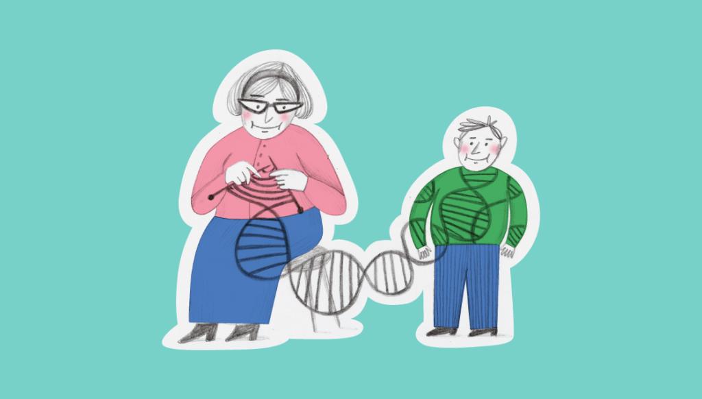 Генетический фактор