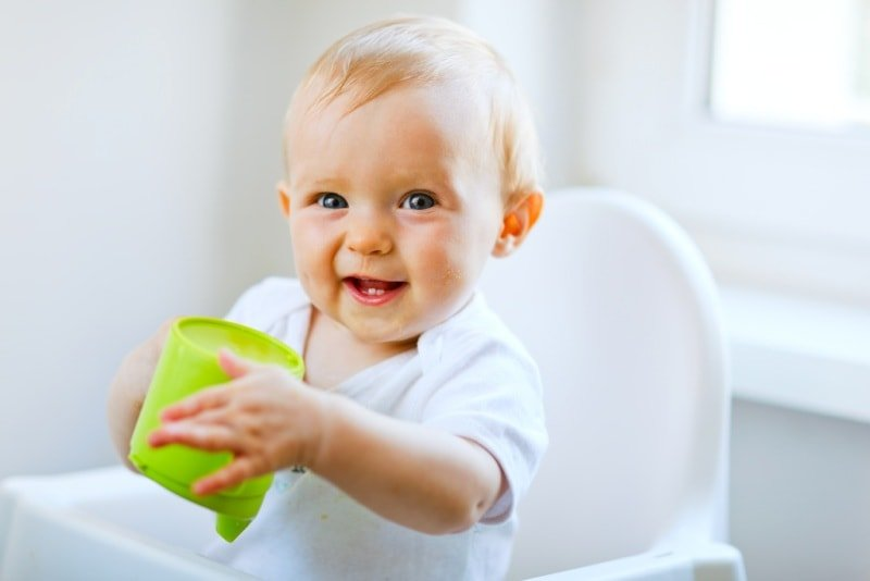 Какие соки давать ребенку и с какого возраста. Самодельные или покупные?