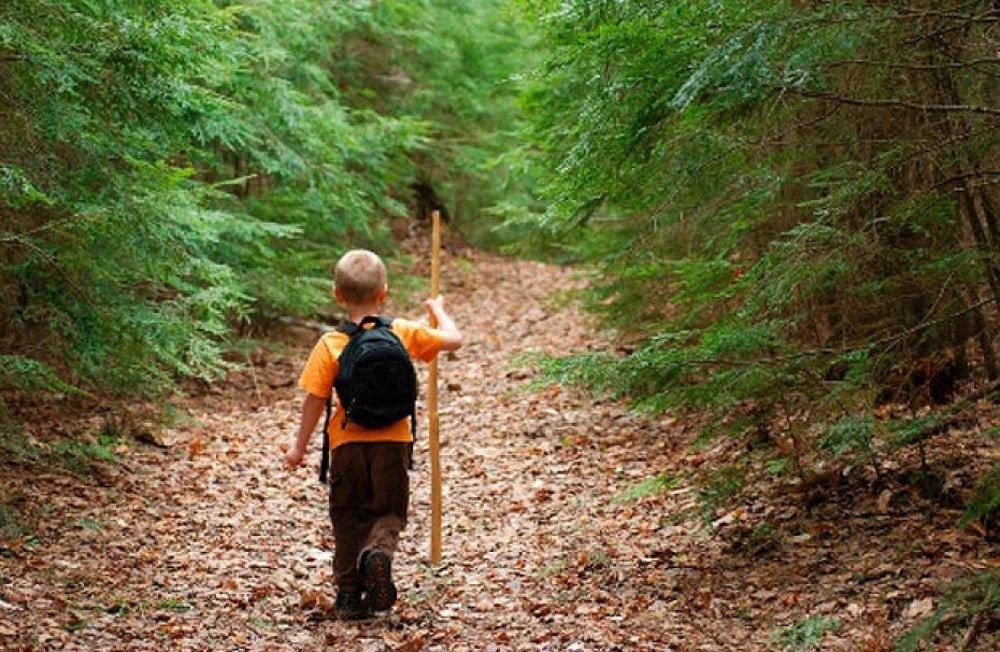 случаи когда дети потерялись в лесу