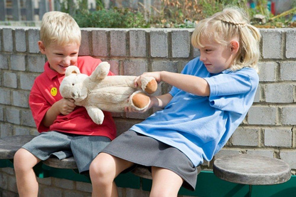 ребенок отнимает игрушку