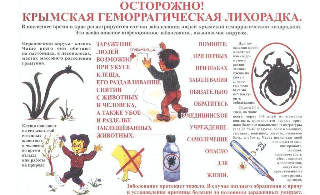 Лихорадка Крым-Конго